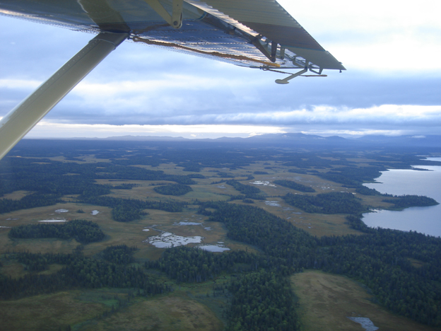 View of all the lakes and rivers of Alaska from the air
