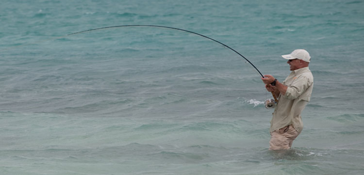 Hosted fishing trips to Christmas Island