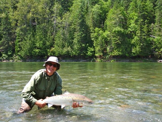Hard Fighting Salmon
