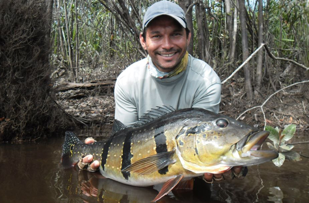 Fly Fishing Peacock Bass in Brazil