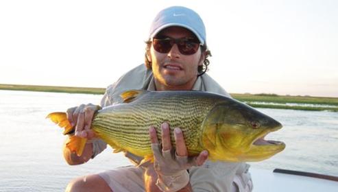 a big golden dorado from Pira Lodge