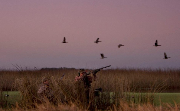 Shooting ducks A Quick Shooting Report From Argentina