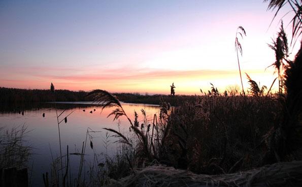 Argentina shooting report of a wonderful splash for ducks
