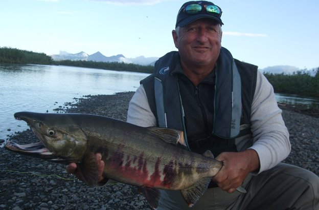 Hosted Salmon Fishing Reports Kirk holding a cracking big Chum Salmon from Alaska, the best fly fishing destinations for salmon