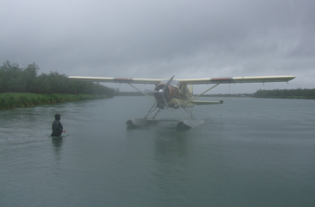 Hosted Salmon Fishing Reports a misty morning in Alaska fly fishing for salmon