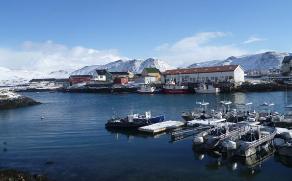 Norway Fishing Report of Soroya Harbour
