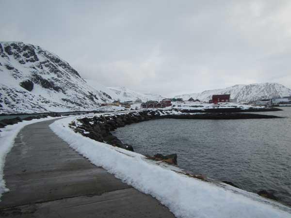 The harbour wall around Soroya Norway Fishing Report