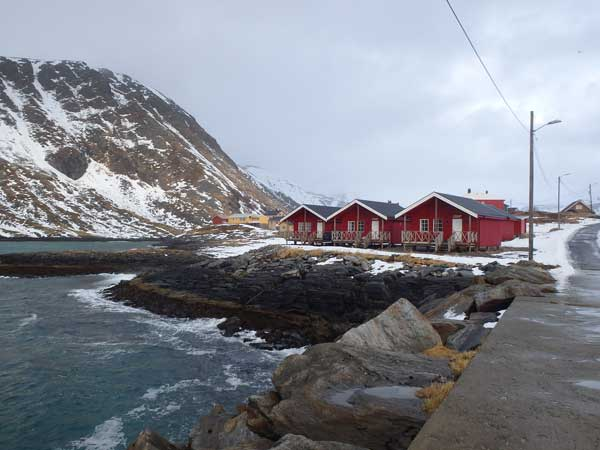 A view of the cabins at soroya Norway Fishing Report