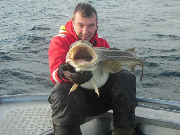 The mouth of these cod are huge Norway Fishing Report