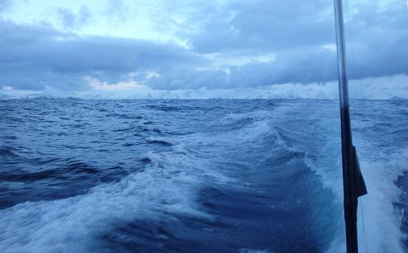 Rough seas Norway Fishing Report