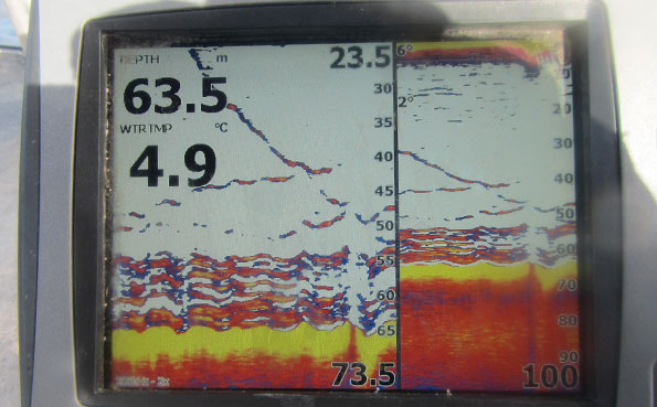 Fishing Report Norway of a Garmin fish finder