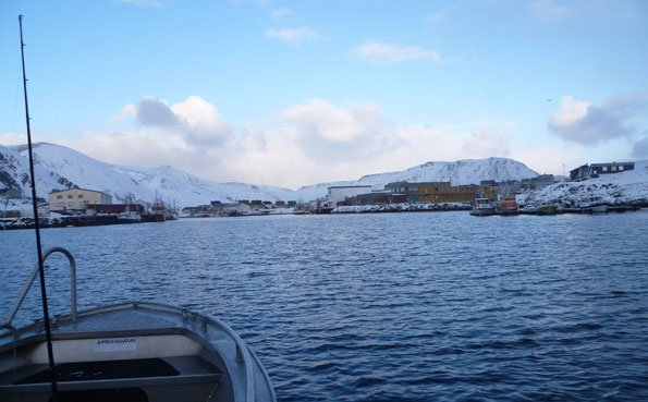 The harbour at Soroya Norway fishing report