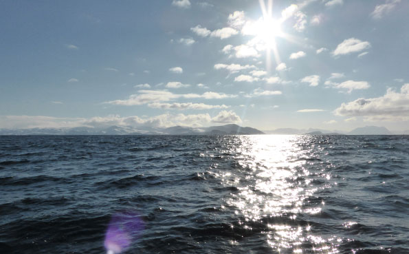 Perfect sunrise this day Norway fishing report