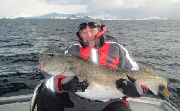 Giant Cod from soroya Norway fishing report