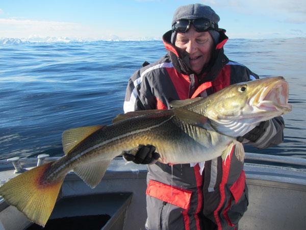 A shot of the flat calm sea in Soroya Fishing Report Norway