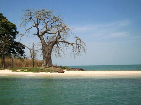 Such quiet beaches New Destination Guinea Bissau Report