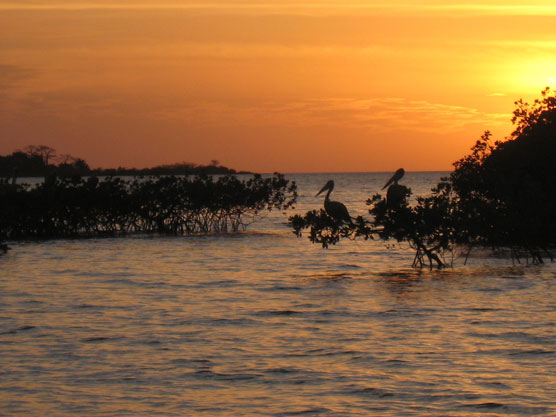 Sunset over New Destination Guinea Bissau Report