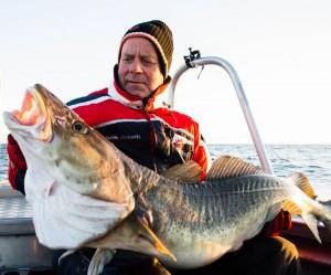 30 Kilo Cod from Lofoten Norway fishing report