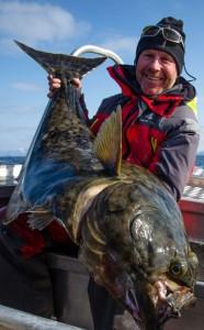 Halibut feeding hard Norway fishing report