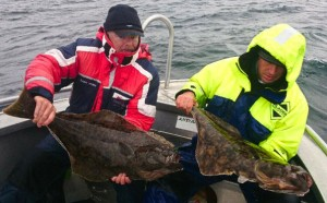 Multiple catches of halibut Fishing report Norway