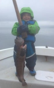 Young boy holding a big Wolfish Fishing Report Norway