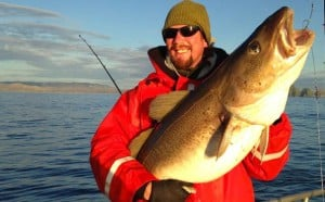 What a stunning large Norwegian Cod for my Norway fishing report