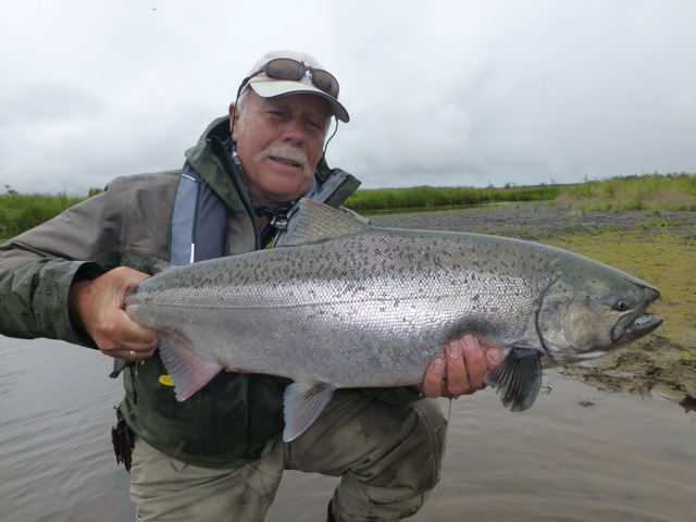 fly fishing for king salmon in alaska is amazing sport as you can see