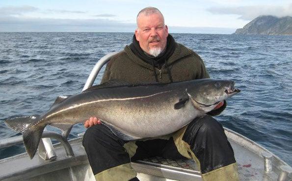 Norway fishing report of Brutus holding his winning coalfish