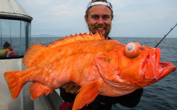 Northern Norway Fishing Report August 2014 | Sportquest