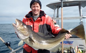Roger holding a big fat cod Norway fishing report