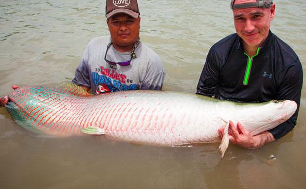 Thailand_Flyfishing_Arapaima_Redtail__0003