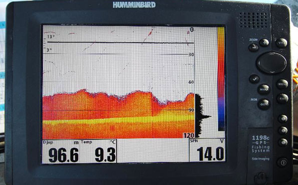 A fish finder full of fish in Norway Fishing Report