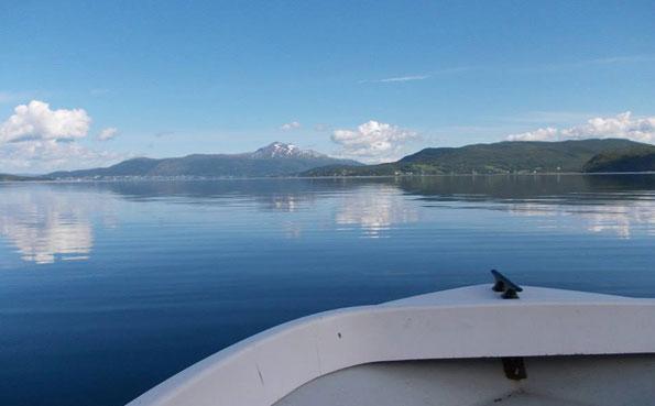 Sandbakken has flat calm fjords Norway Fishing Report