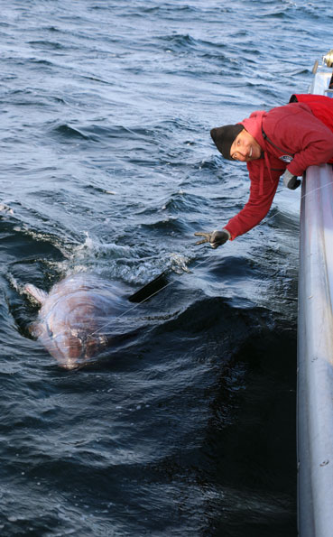 A very happy angler Bluefin Tuna Fishing Report