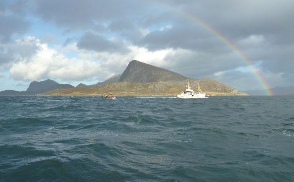 Lofoten commercial fishing Boat fishing report Norway
