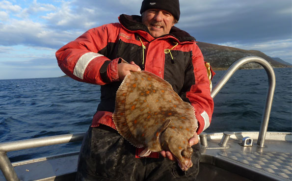 fishing report Norway Of some huge Plaice for Andrei