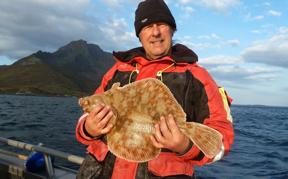 A very big Plaice caught fishing report Norway