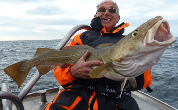 fishing report Norway of some huge Cod like this 20Lb Cod