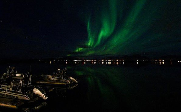Norway fishing report on the stunning Northern lights over Lofoten