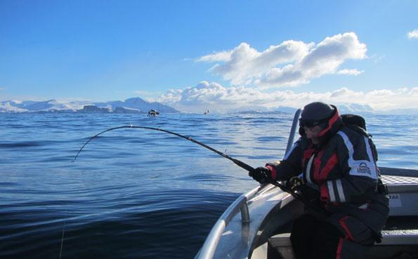Bright blue skies and flat seas Norway fishing report Soroya