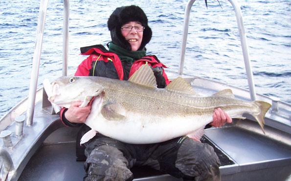 50LB Cod from Soroya Norway fishing report