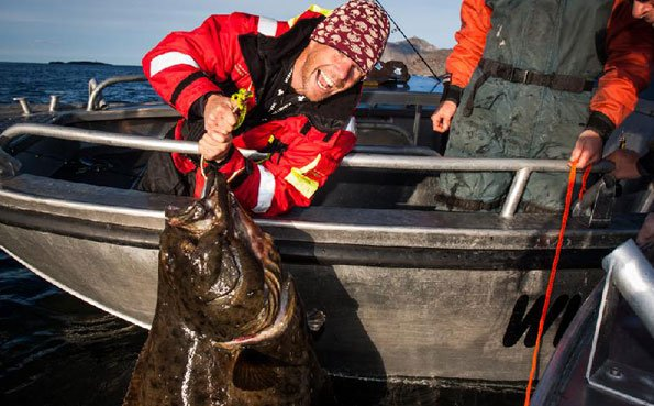 Norway fishing report of a red letter day for Halibut