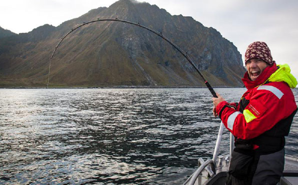 Awesome bend in his rod catching halibut Norway fishing report