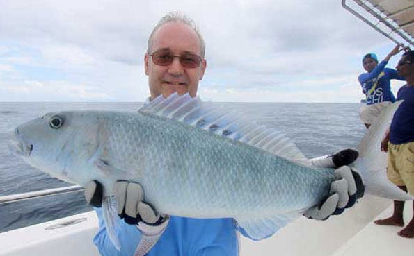 what a super looking fish Fishing Report Andaman