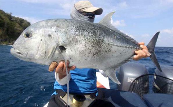 GT fishing Fishing Report Andaman