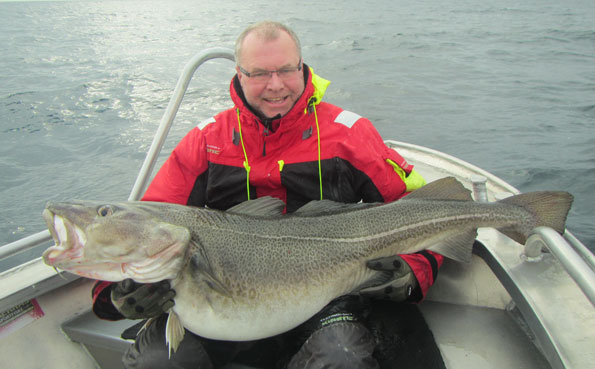 Huge Cod in this fishing report norway from Soroya