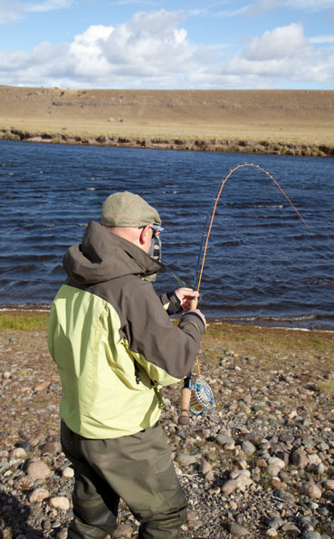 playing a sea trout on a fly rod in Argentina