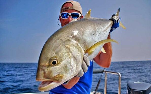 A different trevally Sri Lanka Fishing Report