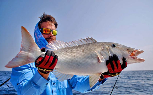 Plenty of different species in this Sri Lanka Fishing Report