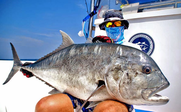 Massive GT from our Sri Lanka Fishing Report